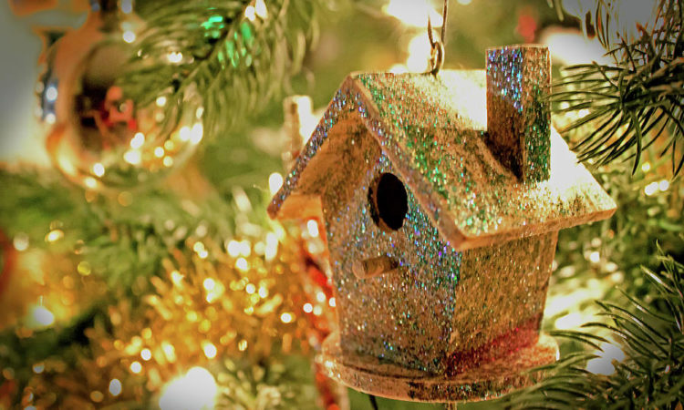 birdhouse-ornament-ira-marcus