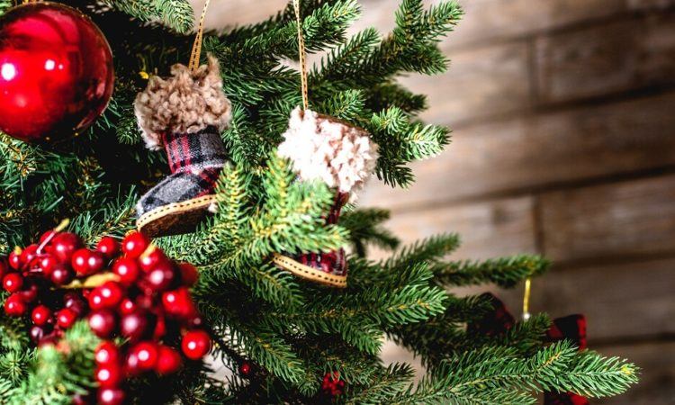 -christmas-tree-live