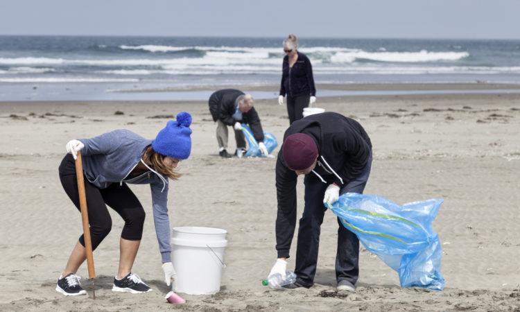 Teamwork: Beach Cleanup