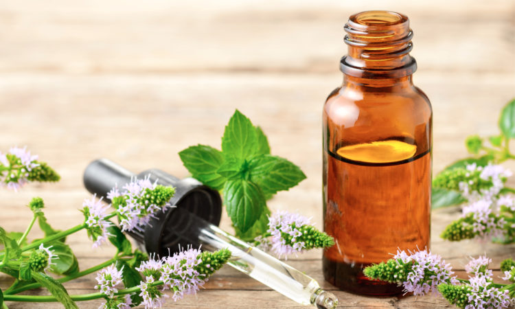essential-oil-to-repel-bugs
